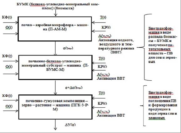 биотехнологической системе
