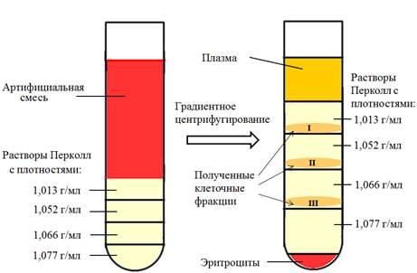 metodi-ochistki-spermi
